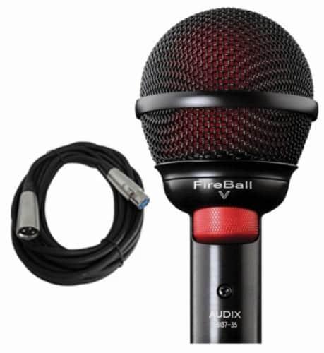 Harmonica beatboxing mic